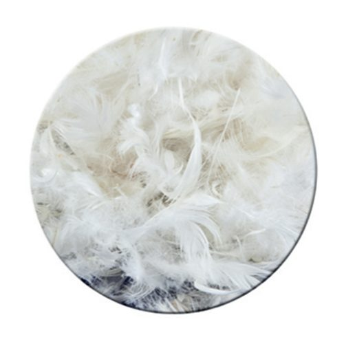 Feather filling